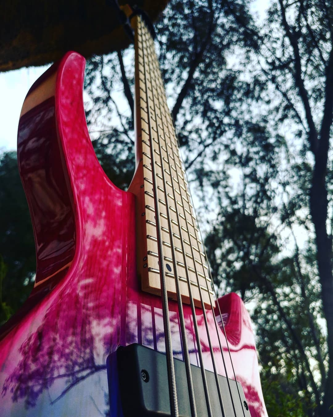 djent 6 string bass ormsby south africa